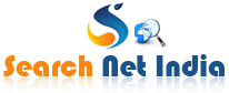 Searchnet India Website Designing & SEO Company in Delhi